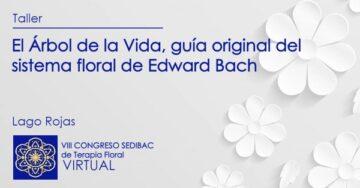 Taller: El Árbol de la Vida, guía original del sistema floral de Edward Bach